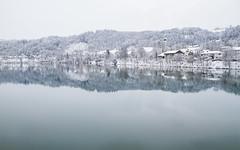 Wernstein im Winter (foto.holic) Tags: schnee winter snow reflections river inn fluss obersterreich reflexionen grenze neuburg wernstein