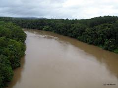 chocolate river (Hai-Ray) Tags: waterfall rainforest wasserfall australia australien kuranda regenwald