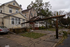 bzt (astrowerx) Tags: newyorkcity tree lines aftermath power sandy hurricane utility pole queens fallen naturaldisaster hurricanesandy