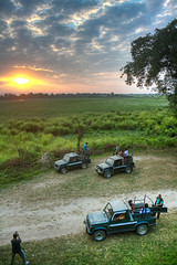 Kaziranga National Park on a lovely evening (Gourab Das (MG)) Tags: sunset jeep grassland assam wildlifesafari kaziranga jypsy northeastindia incredibleindia kokora forestofindia