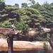 Pontes destruídas pela ação das chuvas
