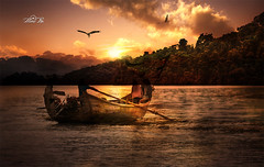 Rowing boat (maan.pho) Tags: morning trees sunset sea sun beach nature night landscape