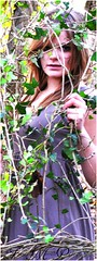 Picture19 (Francesca Morrell Photography) Tags: wood trees winter brown cold colour green nature leaves composition contrast photography woods pretty december natural earth branches models perspective highcontrast ivy francesca dresses bark elements morrell alevel naturalelements theelements alevelphotography alevelproject alevelphotographyproject thenaturalelements francescamorrell francescamorrellphotography morrellphotography