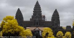 Angkor Wat Through the Mist (Watsons Wanderings) Tags: color architecture temple ancient worship asia cambodia religion digitalart angkorwat infrared siemreap oilpainting 2012 bradleycwatson bradwatsonmediacom