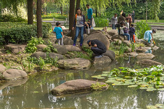 park families (stevefge) Tags: china shanghai park people family girls children kids kinderen water candid reflectyourworld