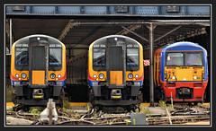 04.07.16 Clapham Junction...450086..450106..456021.. (Tadie88) Tags: railways tracks stations platforms nikond7000 claphamjunction london nikkor200500 450086 450106 456021 lunaphoto