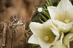 #Eheringe und #Brautstrauss immer wieder ein traumhaftes #Motiv (PolaROITH Fotografie) Tags: nikon nikonphotography love liebe hochzeitsfotografie hochzeitsbilder hochzeit wedding bridebouquet eheringe weddingrings brautstraus instagramapp