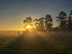 Tog in the Mist (jactoll) Tags: pershore worcestershire dawn sunrise mist misty dawnmist light landscape photographer sony a7ii zeiss 1635mmf4 jactoll