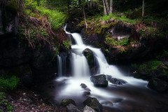 rush (Rainer Schund) Tags: rush schwarzwald todtnauerwasserflle wasser wasserfall cascade nikon nikond700 natur nature natureexploring naturemasterclass nebel germany wald forest