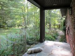 Nimbus on the porch (hartjeff12) Tags:
