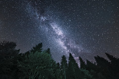 A Place Beyond the Pines (PLF Photographie) Tags: pines sapins toiles stars milky way voie lacte nuit night pose longue long exposure vosges france fullspectrum