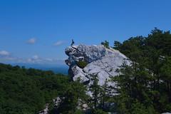 Bonticou Crag (Cagsawa) Tags: bonticou crag bonticoucrag cliff edge cliffedge mohonk preserve mohonkmountain mohonkpreserve mountain rock hike hiking hiker tree nature outdoor sky rx100 summer hudson valley hudsonvalley ny newyork upstateny upstate elevation boulder