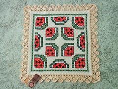 3 (AneloreSMaschke) Tags: tecido xadrez bordado artesanato