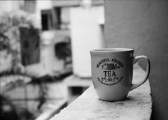 Evening tea (Himanshu Joshi Bangalore) Tags: blackandwhite bw fomapan push processing pushprocessing film analog cup tea monochrome 400 iso400 iso 800 pushetto800