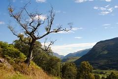 image (e.davidson1) Tags: scotland perthshire schottland glenlyon