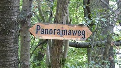 Wandern im Hunsrück: Panoramaweg bei Spabrücken