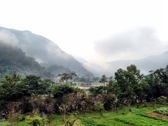 Tree Tranquil Scene Mountain Scenics Tranquility Grass Mountain Range Fog Nature Sky Green Color Plant Water Beauty In Nature () Tags: tree tranquilscene mountain scenics tranquility grass mountainrange fog nature sky greencolor plant water beautyinnature