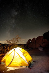 A night at Joshua Tree (Julee Ung Photography) Tags: joshuatree nightshot california nationalpark stargazing stars camping travel nature outdoors