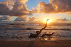 Nukoli'i Beach Sunrise (russ david) Tags: nukolii beach sunrise kauai island pacific september 2016 park ocean driftwood