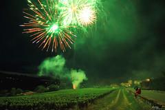 Fireworks / Feu d'artifice in Pommiers - France (Pito Charles) Tags: fireworks feu artifice feudartifice pommiers anse france nuit night light lights lumires lumire vignes vigne vineyards beaujolais rhonealpes rhone public audience