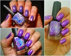 Plum Perfect - Colors by Llarowe (Raabh Aquino) Tags: unhas esmalte roxo holográfico loucadosroxos nails nailpolish indie purple holographic