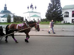 Horse and people (lubovphotographer) Tags: horseandpeople people horse suzdal smartphoto smartphot smartphonephotography smartphonephoto coolish cool man flyeranano9 trip road street town   2016         playingwitheffects