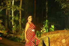 South Actress Madhuchandaphotos Set-4-Hot In Modern Dress (29)