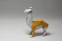 Fumiaki Kawahata. Lama (kastudio) Tags: origami art paper lama kawahata fumiaki llama