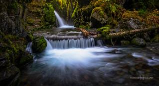 Virgin creek revisited