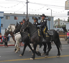 I never ever see police horses so I don't know where they got them from (rasputina2) Tags: santamonica july4 independenceday parade police mounted horse