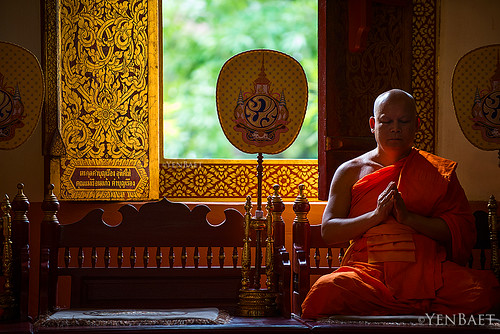 Chiang Mai - Praying Monk at Wat Phra Singh