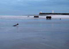 Aberdeen Beach, Dusk (.annajane) Tags: ocean uk longexposure blue sea lighthouse beach night coast scotland lighthouses post dusk aberdeen northsea torry southbreakwater