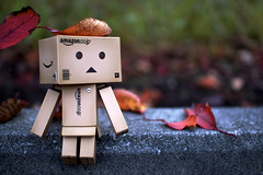 (clearstyle) Tags: canon eos kiss sigma 2012 x2 30mm danbo