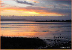 Tay Sunset 2 (eric robb niven) Tags: winter sunset cycling rivertay dundee kingoodie canong12 ericrobbniven