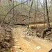 Wolf pen gap atv trail in Ouachita national forest