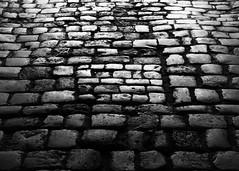 Leeds Castle 8718 (Tony Withers photography) Tags: uk castle lady kent leeds olive historic cobblestones cobbles 2012 baillie