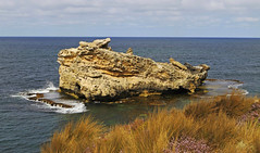 Frog Rock : Late morning . . . (Clement Tang ** busy **) Tags: morning travel summer seascape nature landscape australia bluesky southaustralia nationalgeographic frogrock closetonature portmacdonnell concordians scenicsnotjustlandscapes grandemaregroup capethumberland