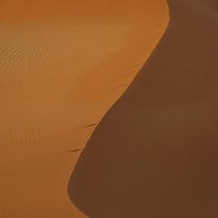 Namibian sand dune (Sallyrango) Tags: abstract 510fav sand dunes curves namibia