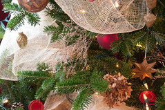 Christmas tree with dried flowers (kizilod2) Tags: christmastree