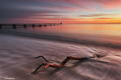 The Pier, The Pipe And The Branch (Dave Brightwell) Tags: light red sky lighthouse seascape clouds sunrise canon pier branch tide pipe northumberland redsnapper blyth davebrightwell