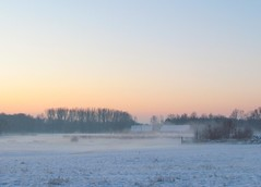 just before sunrise (Foto Dominic) Tags: morning winter mist snow fog sunrise nevel sneeuw fields ochtend zonsopgang herselt mygearandme mygearandmepremium mygearandmebronze mygearandmesilver mygearandmegold mygearandmeplatinum mygearandmediamond photographyforrecreation fotodominic rememberthatmomentlevel4 rememberthatmomentlevel1 rememberthatmomentlevel2 rememberthatmomentlevel3 vigilantphotographersunite vpu2