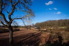 N2 at Kinchley Lane (alanrharris53) Tags: train engine rail steam n2 greatcentralrailway gcr 1477