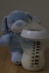 IMG_1860 (Matt Davenport) Tags: england dog baby bottle child dpp ova cuddlytoy assignment5