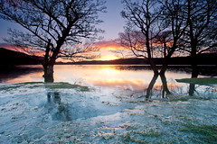 Icy Dawn (PeterYoung1.) Tags: uk ice nature beautiful sunrise landscape scotland colours scenic ard lochard