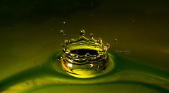 Drop (Christian Cardoso.) Tags: water drop splash collor still highspeed speed