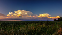 2016-08-18 (Gregg Kiesewetter) Tags: storm storms clouds cumulus illinois illinoisthunderstorm normal