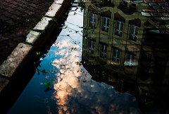 354/365 CurbsideTreats (ewitsoe) Tags: summer reflection reflected cobblestones street ewitsoe erikwitsoe nikond80 35mm city citycneter jezyce curb light clouds architecture buildings smmery water puddle sunset pink hues color sky mirror glass