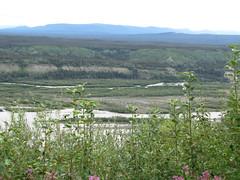 CopperRiver03 (alicia.garbelman) Tags: alaska copperriver rivers vistas waterways