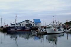 Scenes from the fishing harbor of Sainte-Therese-de-Gasp in Qubec (Ullysses) Tags: saintethrsedegasp gaspesie qubec canada summer t havre harbor fishingboat fishingvessel fishingharbor havredepeche