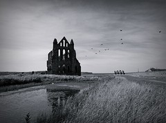 Whitby Abbey (mr_snipsnap) Tags: mono church abbey derelict ruin whitby yorkshire birds reflection silhouette bw coast